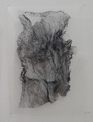 Cecilia de Val, Ruina #20, Serie El Monte Perdido, Tinta pigmentada sobre acetato, 30x 21cm