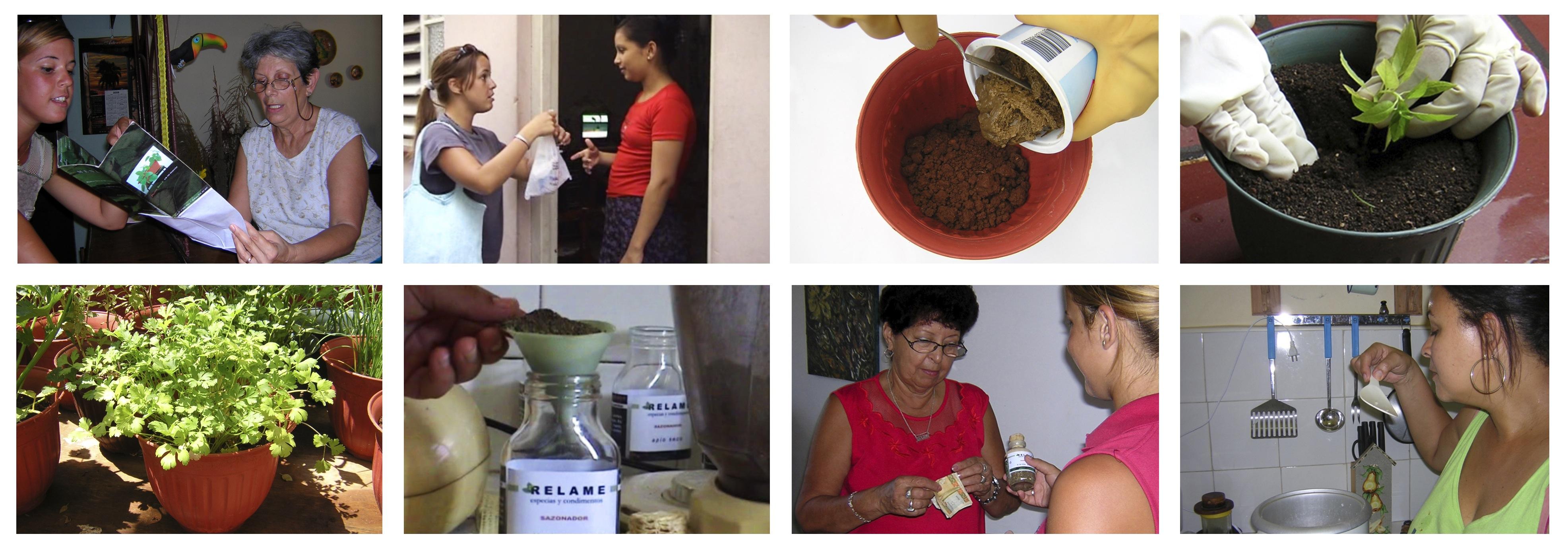Con tu propio sabor, 2005,Grethell Rasúa (Imágenes cortesía de la artista)