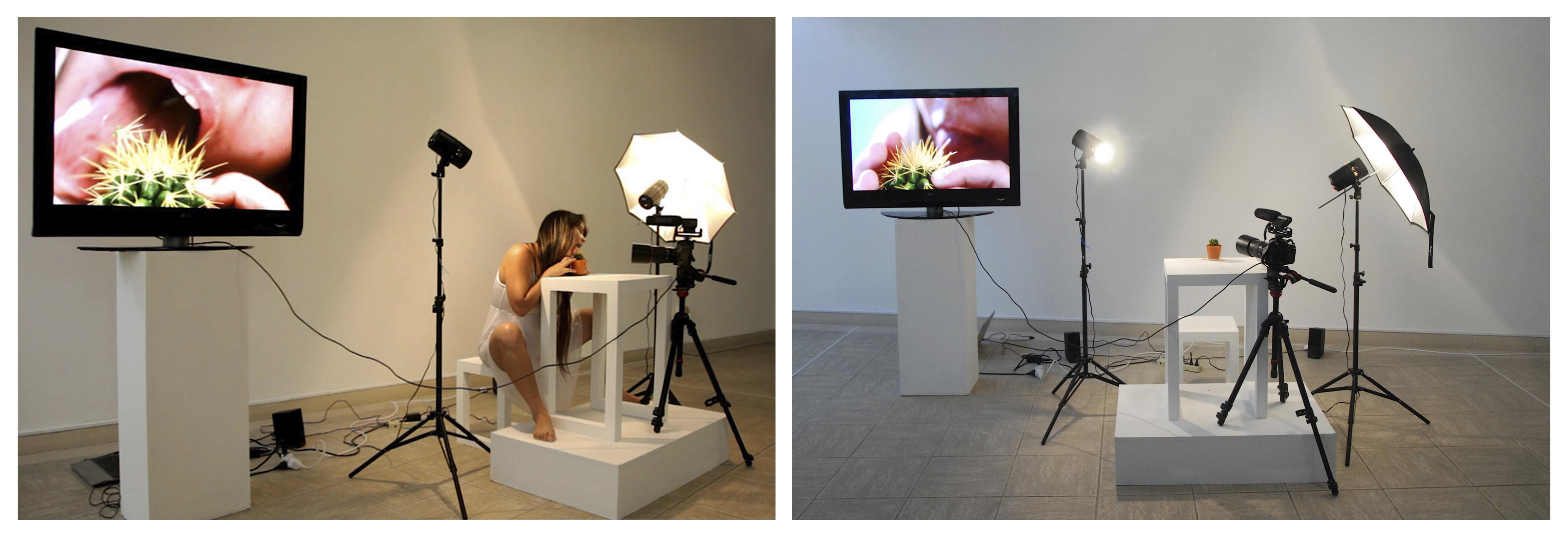 De la permanencia y otras necesidades performance:installation, 2013,2014,2015, Grethel Rasúa (Imágenes cortesía de la artista)